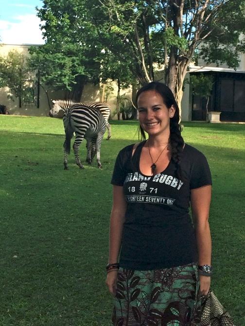 Zebras at the Royal Livingstone