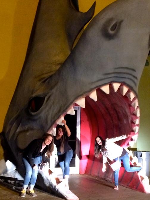 Shark Shot